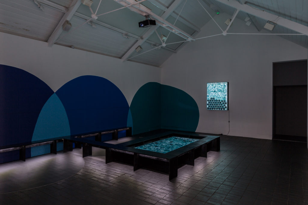 Installation View – works by Rachel Pimm (2016). Commissioned for Jerwood Solo Presentations, supported by Jerwood Charitable Foundation. Image: Hydar Dewachi