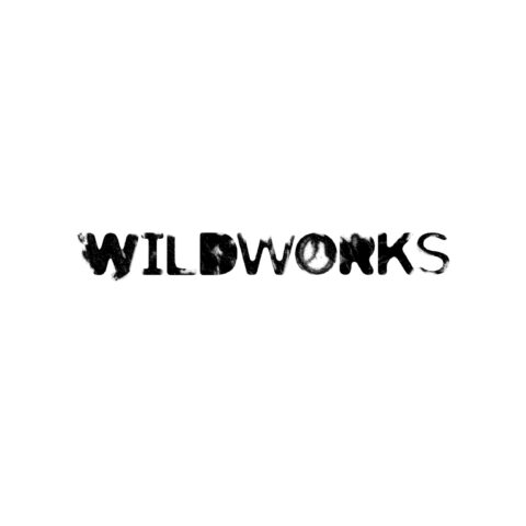 Assistant Producer, Wildworks
